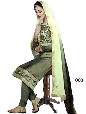 Picture of 1003 Mehandi Green Designer Straight Suit
