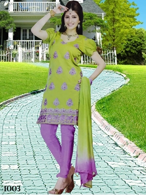 Picture of 1003 Parrot Green Designer Salwar Suit
